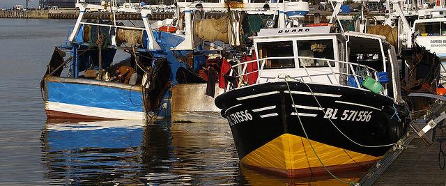 Les 10 premiers ports de p che de france webzine du - Comptoir de la mer lorient ...