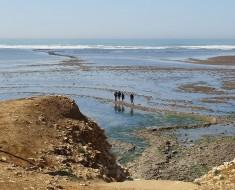 Pêcheurs à pied à la Pointe de Chassiron - crédit photo : Babouchkaya