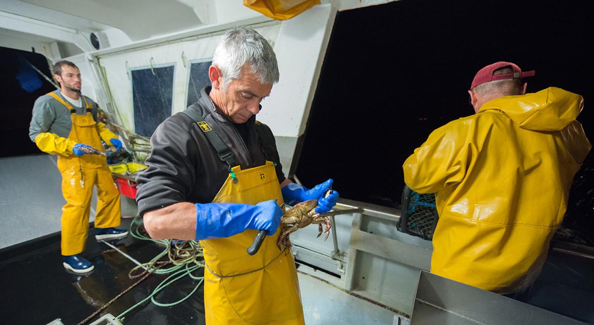 Port de pêche de Lorient - Hervé Cohonner