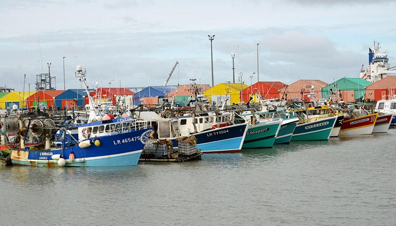 bateaux de pêche - coquille saint-jacques - Bassin des Coureauleurs