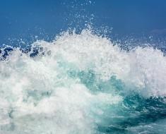 une vague de fraîcheur et de notes aquatiques !