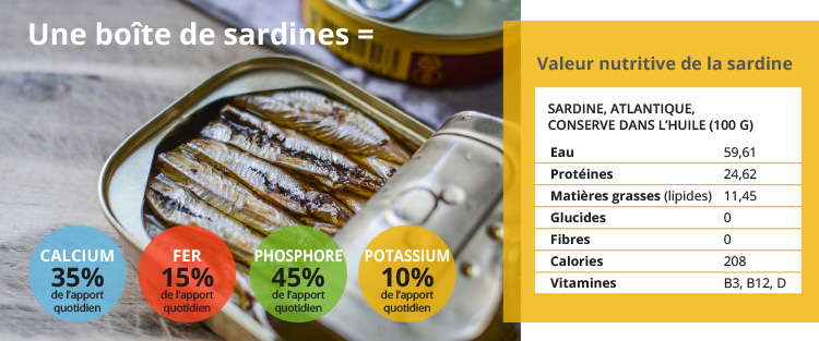 valeur nutritive de la sardine