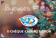 Carte Cadeau - Joyeuses Fêtes