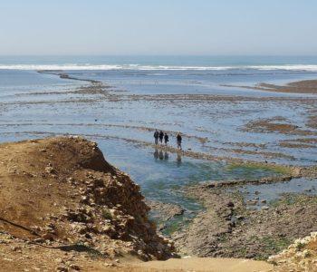 crédit photo : Babouchkaya – Pêcheurs à pied à la Pointe de Chassiron
