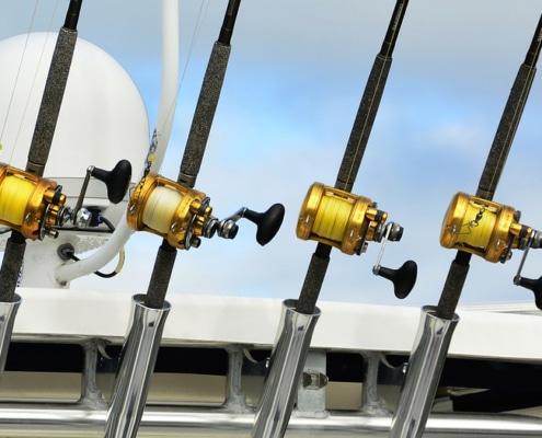 cannes à pêche - pêche en mer
