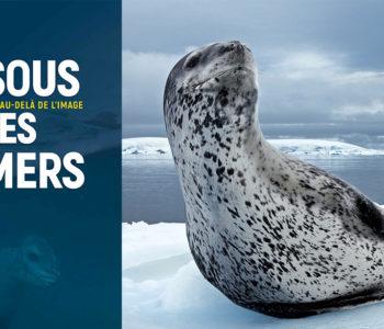 Expo National Geographic - Sous les mers - Bordeaux