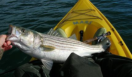 conseils pêche : bon respect des règles
