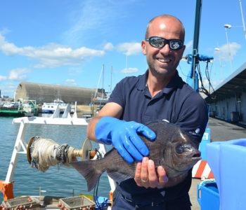 reconnaître un poisson frais