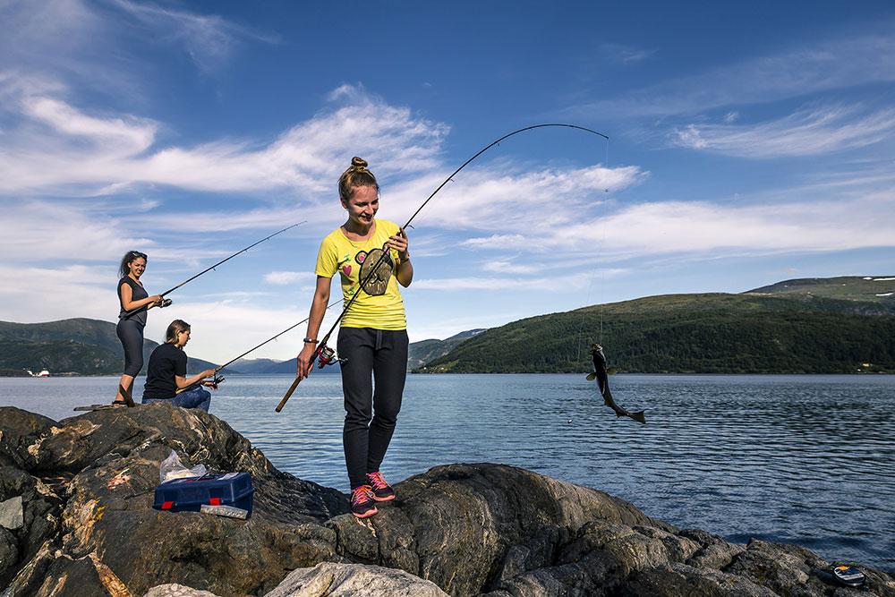 le rockfishing